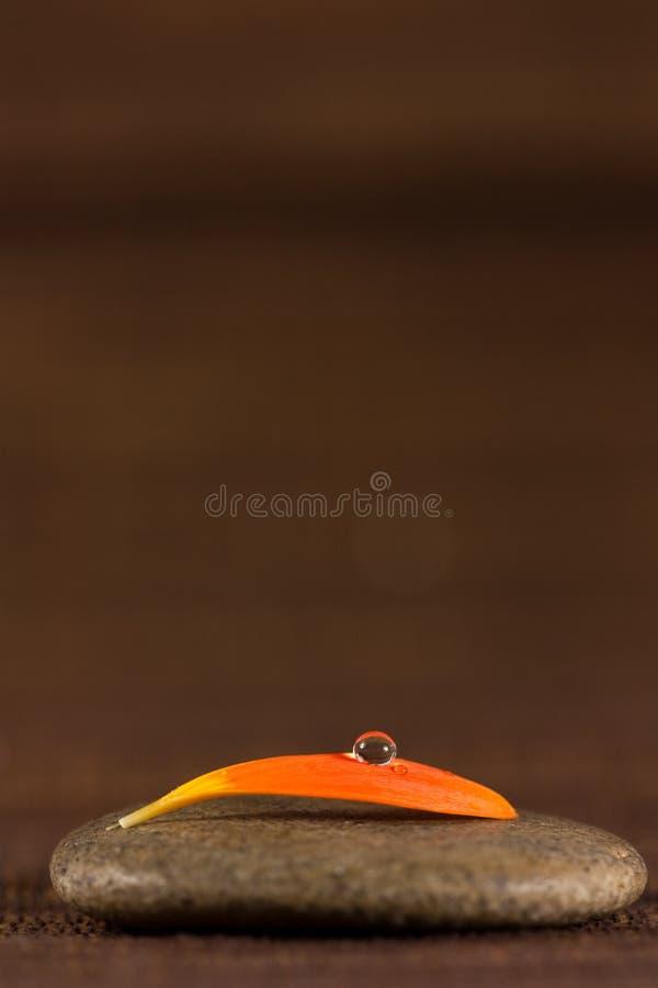 Zen kamień z pomarańczowym płatkiem i woda opuszczamy na brązu tle obrazy stock
