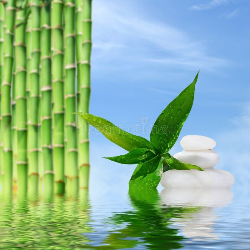 Zen masażu bambus i kamienie odbijali w wodzie fotografia stock