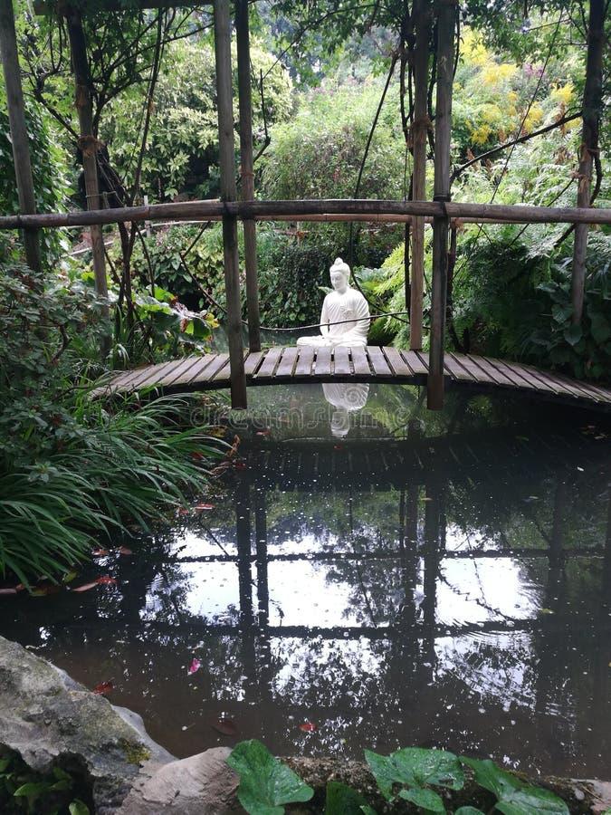 Zen ogród natura pokój zdjęcie stock
