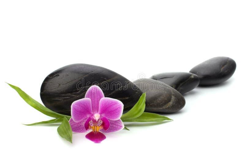 Zen pebbles. Path. Spa and healthcare concept stock image