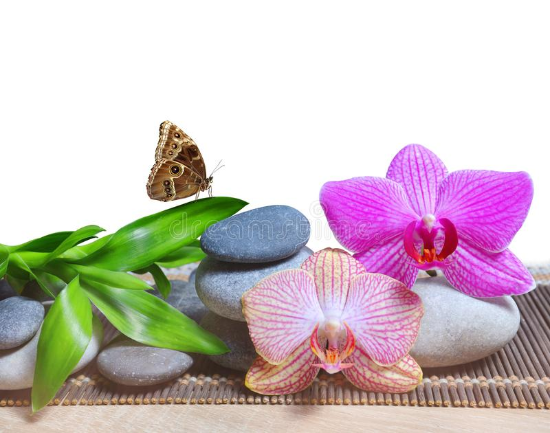 Zen pebbles with bamboo leaves and orchid flowers on white background. royalty free stock photo