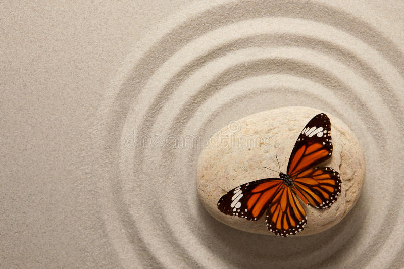 Zen rock with butterfly stock photography