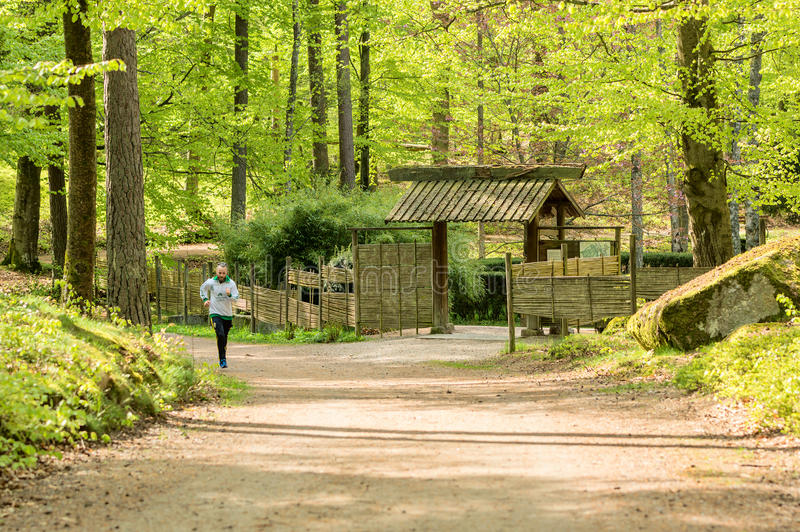 Zen runner. Ronneby, Sweden - May 11, 2015: Unknown male jogger outside japanese garden in lush, green beech forest. Execise in nature is mindfullness and zen in royalty free stock photography