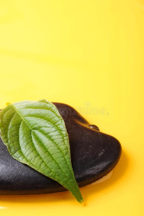Download Zen stone and copyspace stock image. Image of leaf, wellness - 15460743