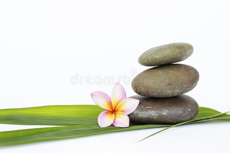 Zen stone on green bamboo leaf and flower on white background royalty free stock image