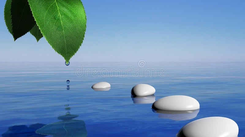 Zen stones. In the blue water and green leaf with water drop stock illustration