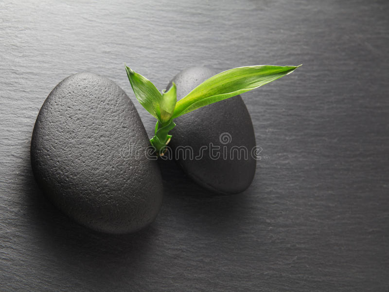 Zen stones and bamboo. On the black royalty free stock images