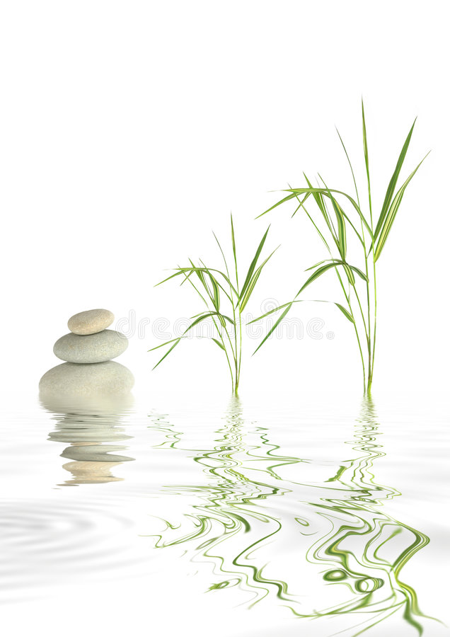 Zen Stones and Bamboo Grass. Zen abstract of grey spa stones and bamboo leaf grass with reflection over rippled water, against white background stock photo