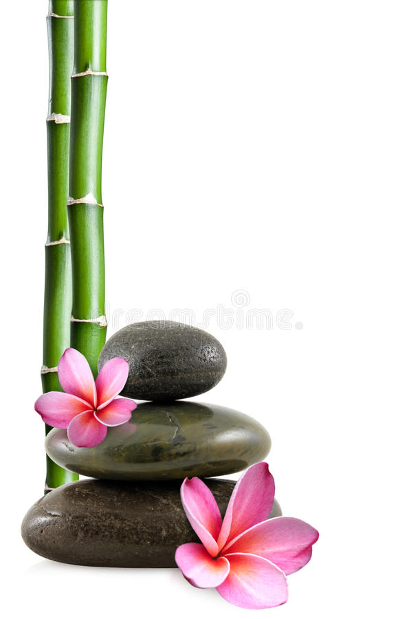 Zen stones, flowers and bamboo royalty free stock photo