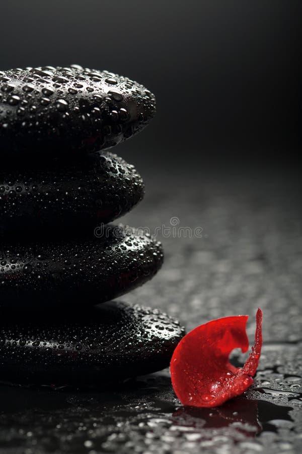 Zen Stones And Rose Petals Over Black Stock Photo