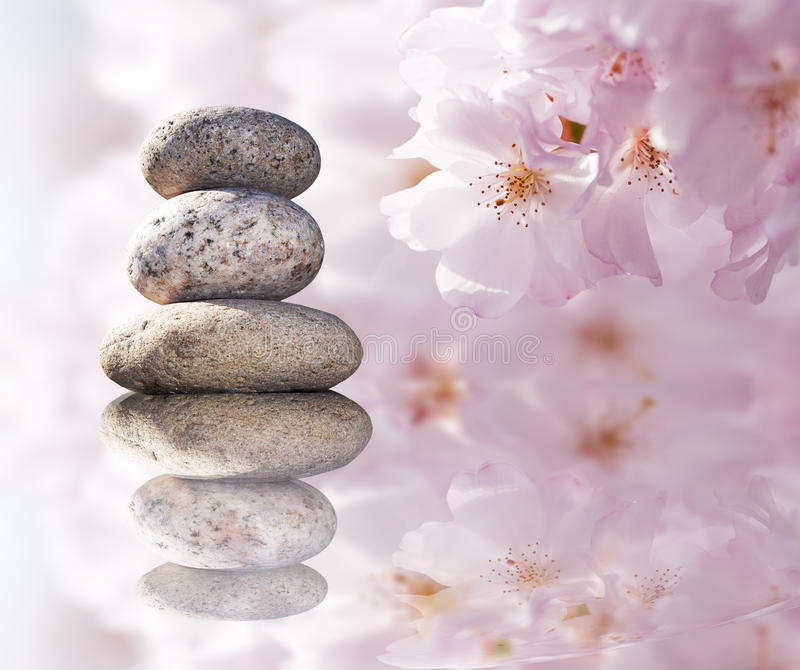 Zen stones and spring flowers stock image