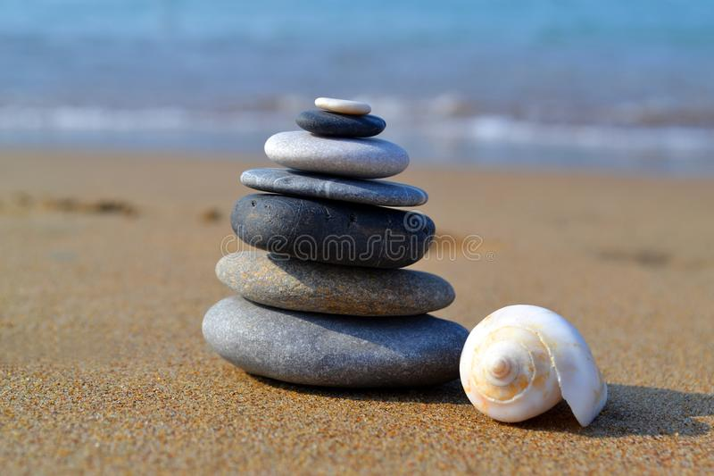Zen stones with white shell on the seashore stock image