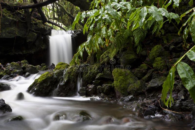 Download Zen Stream stock photo. Image of flow, background, atlantic - 25440424