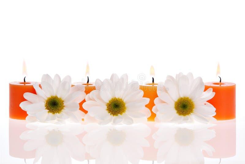 Zen Treatment stock photos