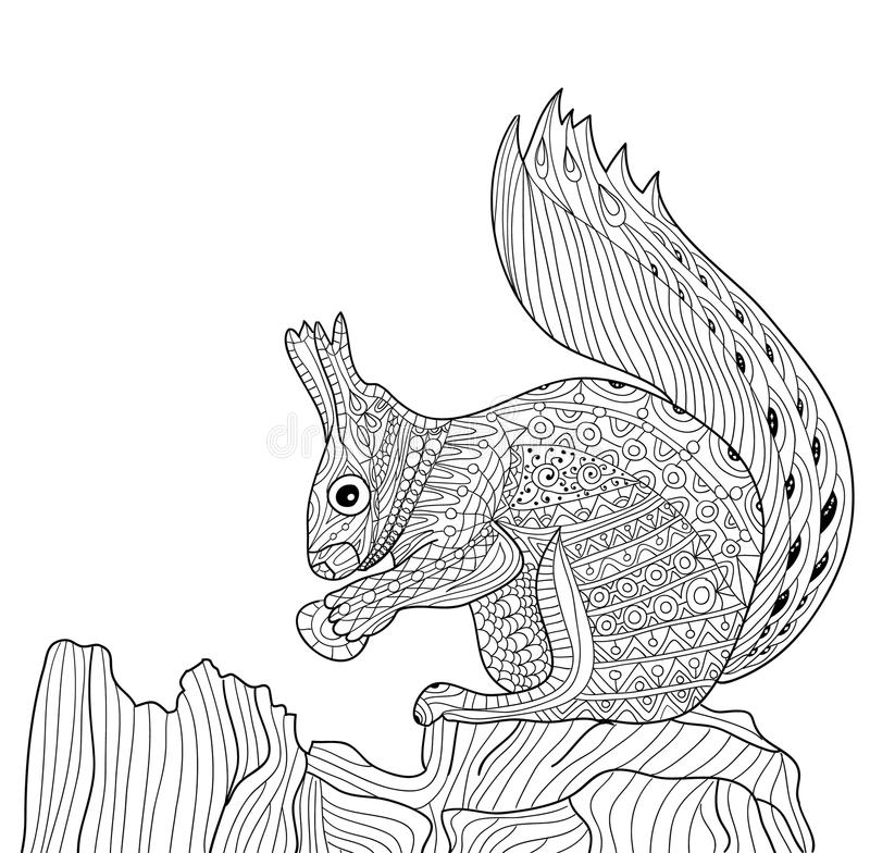 Zenart - zentangle squirrel. Coloring book for adults stock illustration