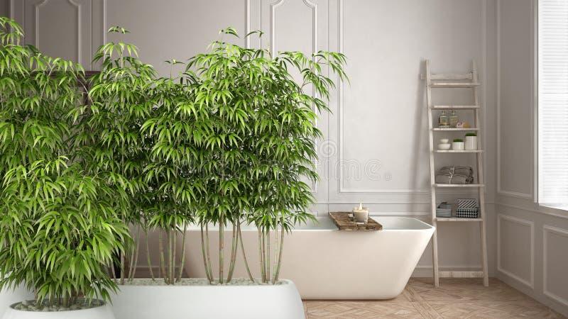 Zenbinnenland met ingemaakte bamboeinstallatie, natuurlijk binnenlands ontwerpconcept, Skandinavische badkamers, wit minimalistic vector illustratie