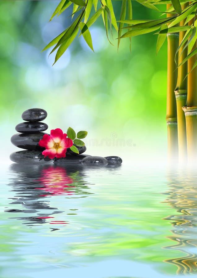 ZENES Stone, color de rosa y bambú en el agua imágenes de archivo libres de regalías