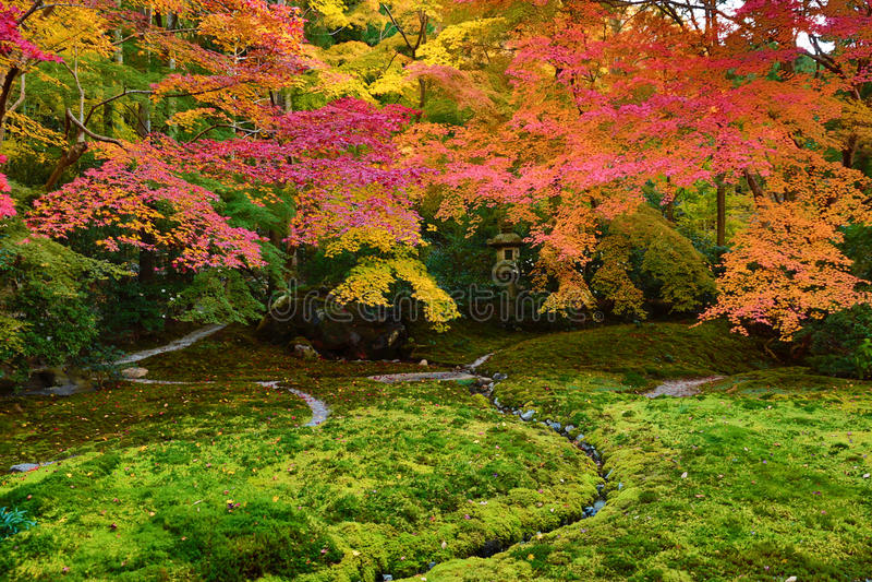 Zengarten an der Herbstsaison bei Japan bei Rurikoin stockfotografie