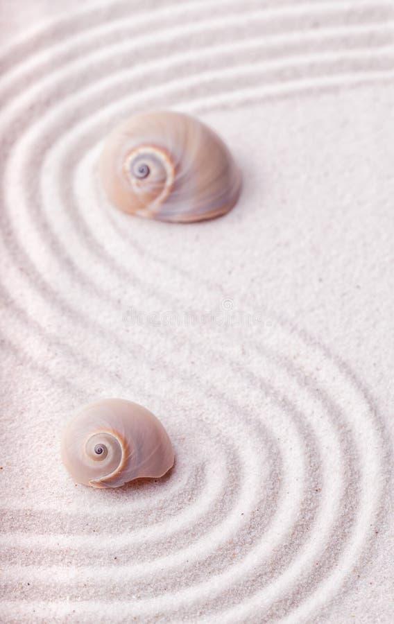 Zengarten mit einer Welle zeichnet im Sand mit entspannender Schnecke stockfotografie