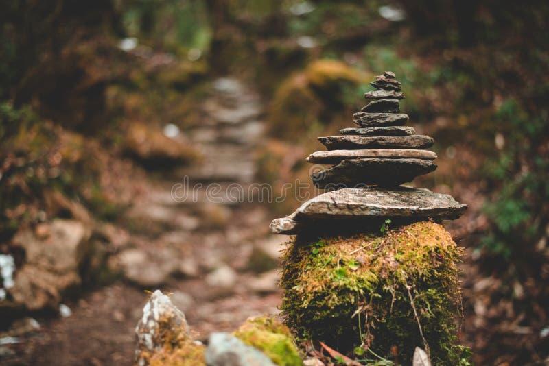 Zenstapel von Felsen in der Balance in einem Wald lizenzfreies stockfoto