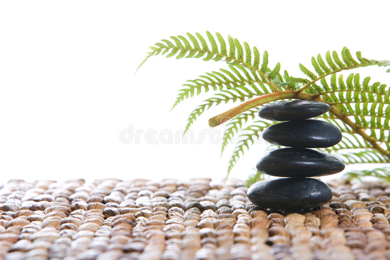 Zensteine mit einem Farn lizenzfreies stockfoto