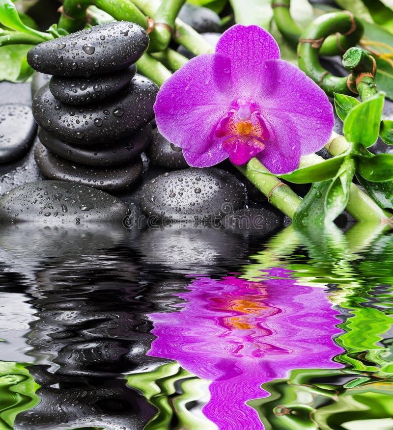 Zenstenar, orkidéblomman och bambu reflekterade i ett vatten fotografering för bildbyråer