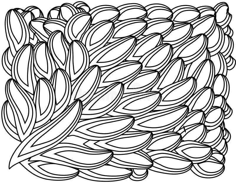 zentangl da ilustração Quadro da flor para a foto Livro de coloração Antistress para adultos e crianças Rebecca 36 ilustração do vetor
