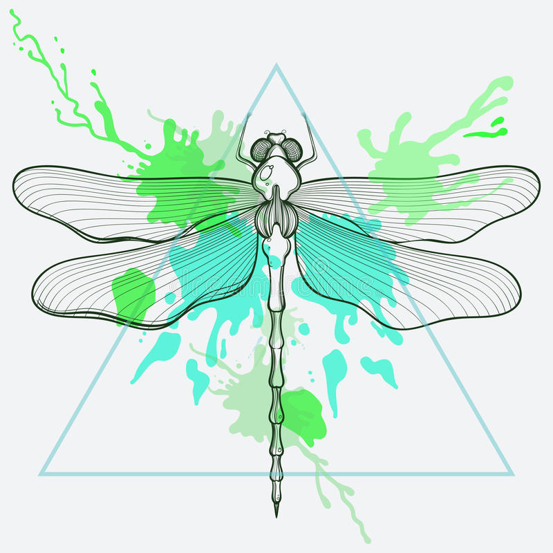 Zentangle传统化了在三角框架的龙飞行与水彩 皇族释放例证