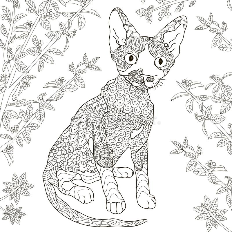 Zentangle传统化了德文郡上色页的rex猫 库存例证