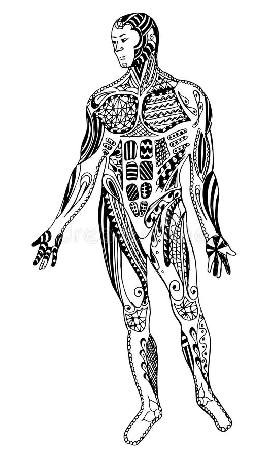 Zentangle肌肉人,徒手画的铅笔,传染媒介,例证,轻拍 库存例证