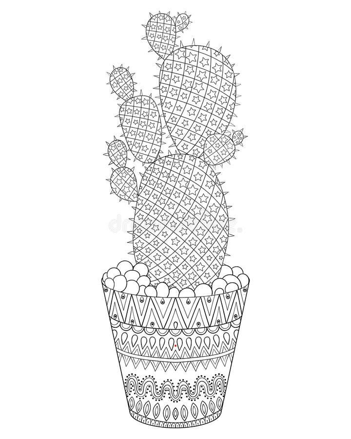zentangle cactus vector illustration  hand drawn outline desert stock vector