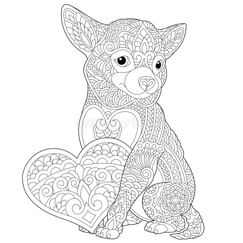 Zentangle chihuahua dog coloring page. Coloring page. Lovely dog with heart for Valentines Day card. Anti stress colouring picture with chihuahua. Freehand royalty free illustration