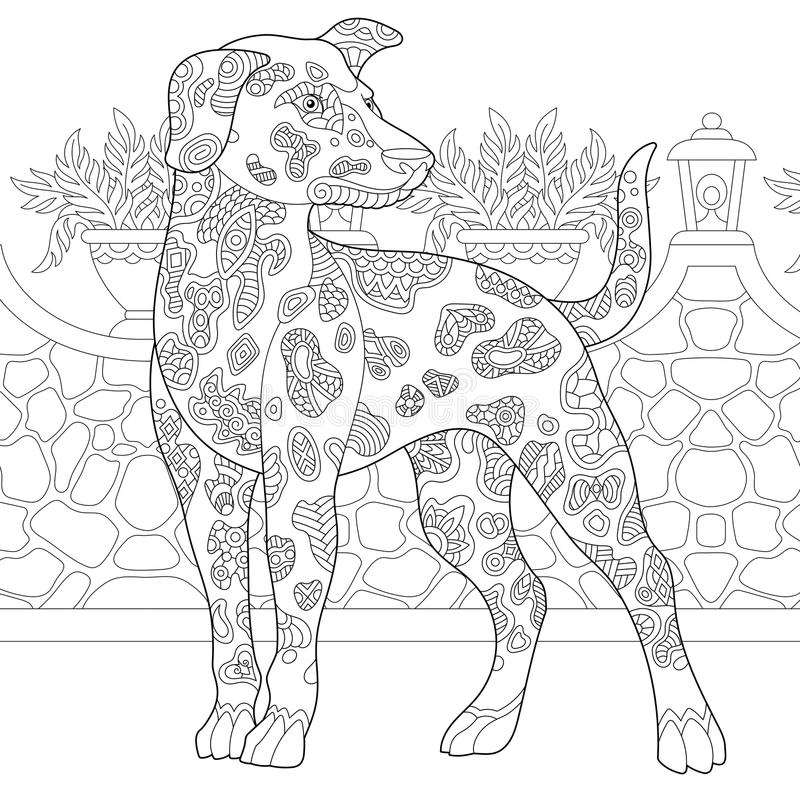 Zentangle dalmatian psa traken ilustracji