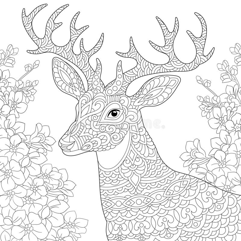 Zentangle deer reindeer coloring page stock photos