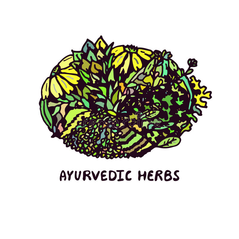 Zentangle element. Ayurvedic herbs. Suitable for ads, packaging and signboards, identity designs vector illustration