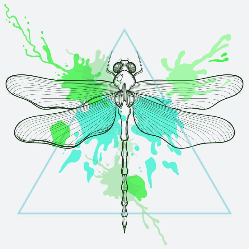 Zentangle estilizou a mosca do dragão no quadro do triângulo com aquarela ilustração royalty free
