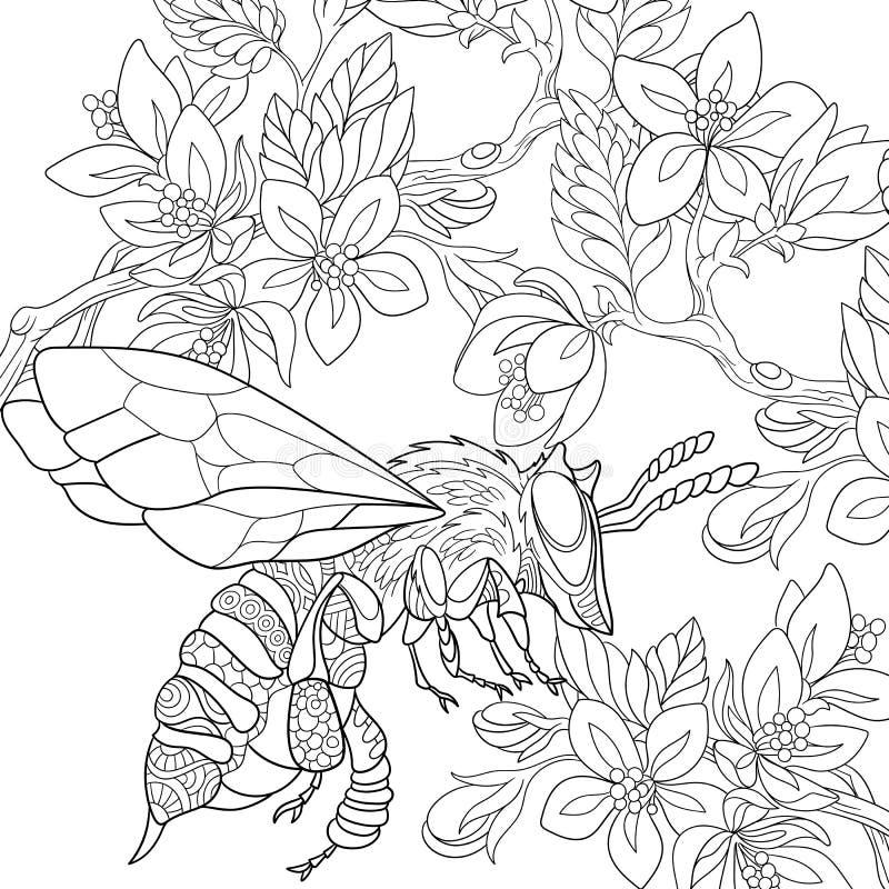 Zentangle estilizou o inseto da abelha ilustração do vetor