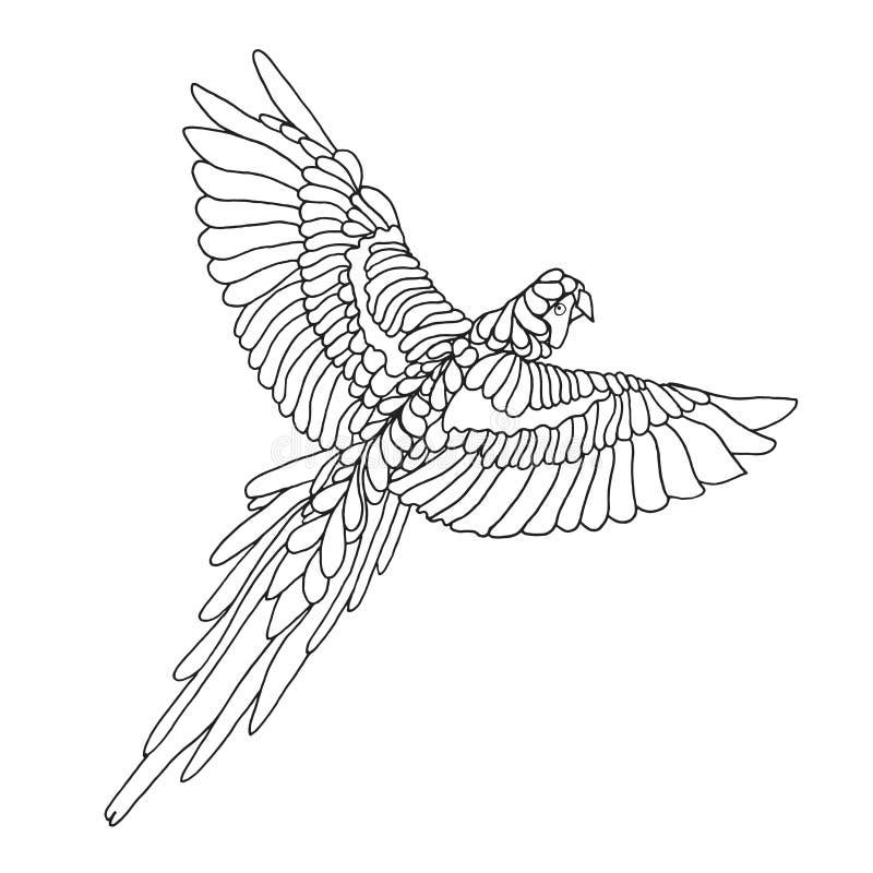 Zentangle estilizou o papagaio da arara Esboço para a tatuagem ou o t-shirt ilustração do vetor