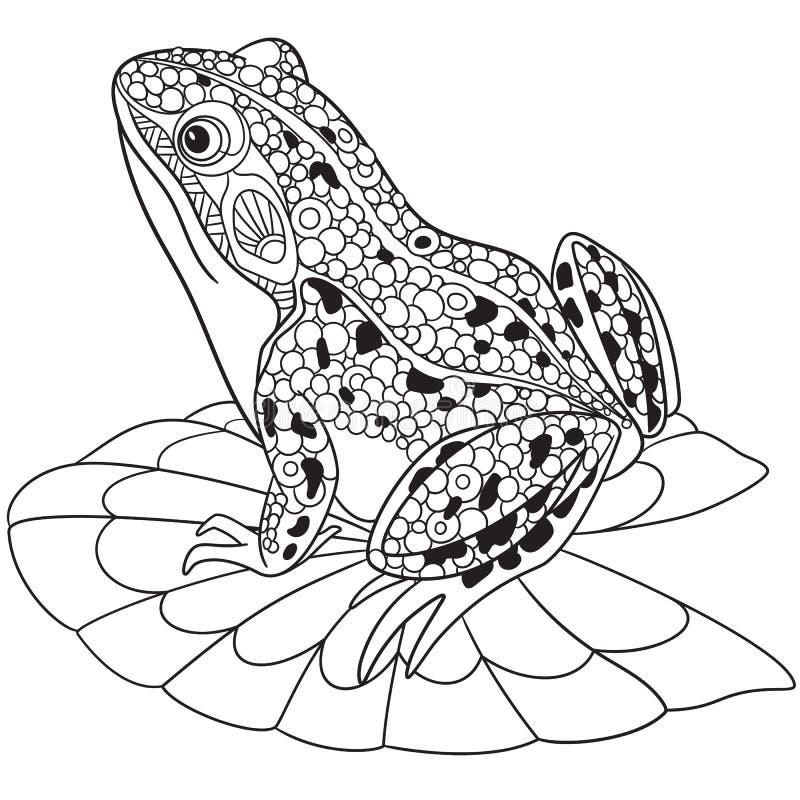 Zentangle estilizou a rã ilustração stock