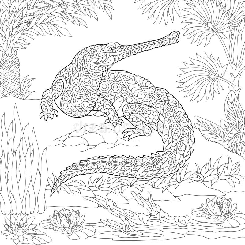 Zentangle gharial crocodile coloring page stock images