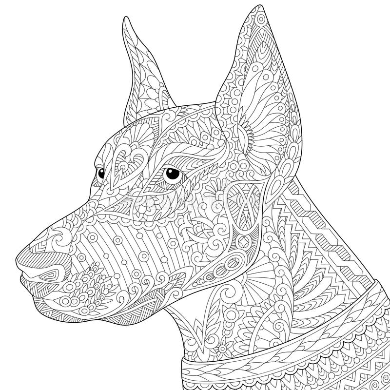 Zentangle ha stilizzato il cane del pinscher del doberman illustrazione di stock