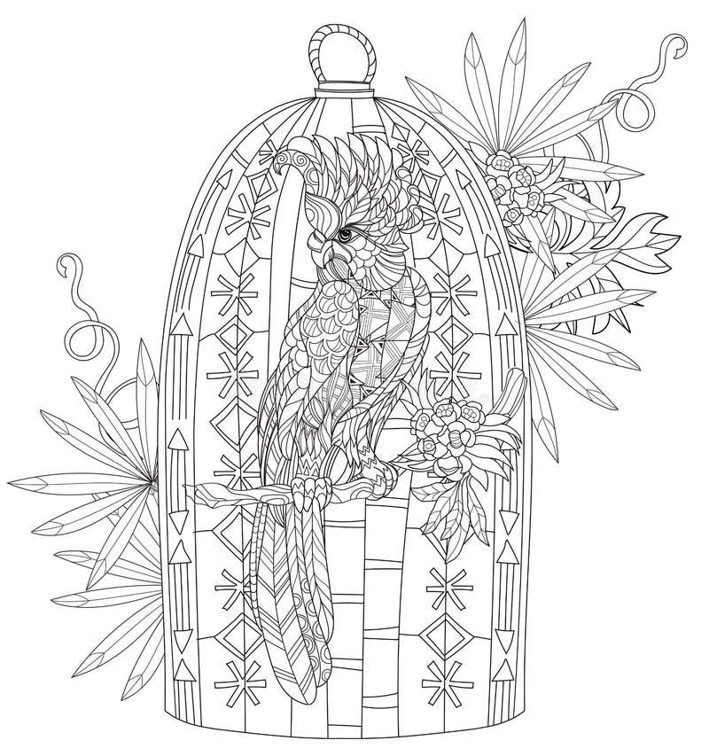 Zentangle ha stilizzato il pappagallo Disegnato a mano royalty illustrazione gratis
