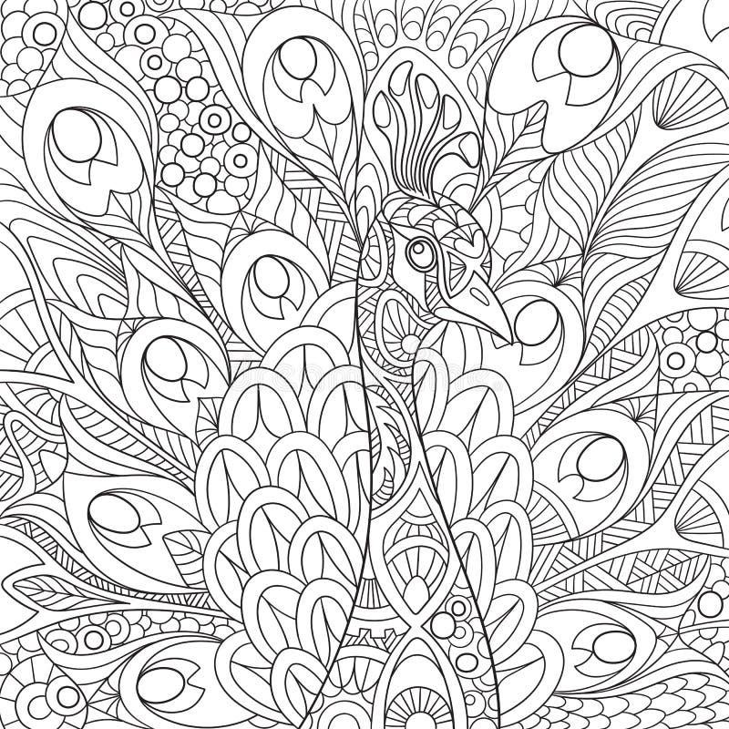 Zentangle ha stilizzato il pavone illustrazione vettoriale