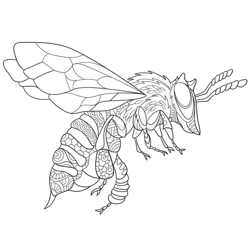 Zentangle ha stilizzato l'insetto dell'ape royalty illustrazione gratis