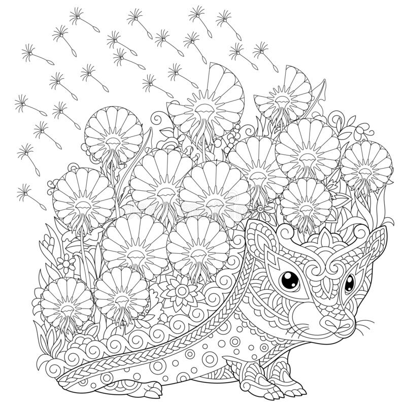 Zentangle hedgehog and spring flowers coloring page stock photos