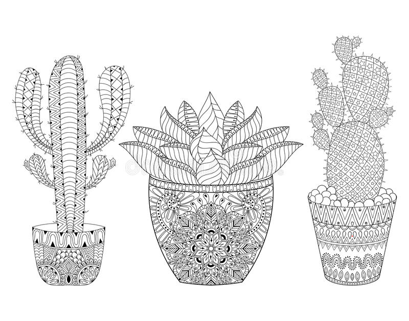 Zentangle kaktusuppsättning, vektorillustration Hand dragen översikt de vektor illustrationer