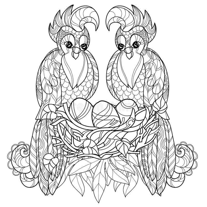 Download Zentangle Parrot On Nest Hand Drawn Vector Stock