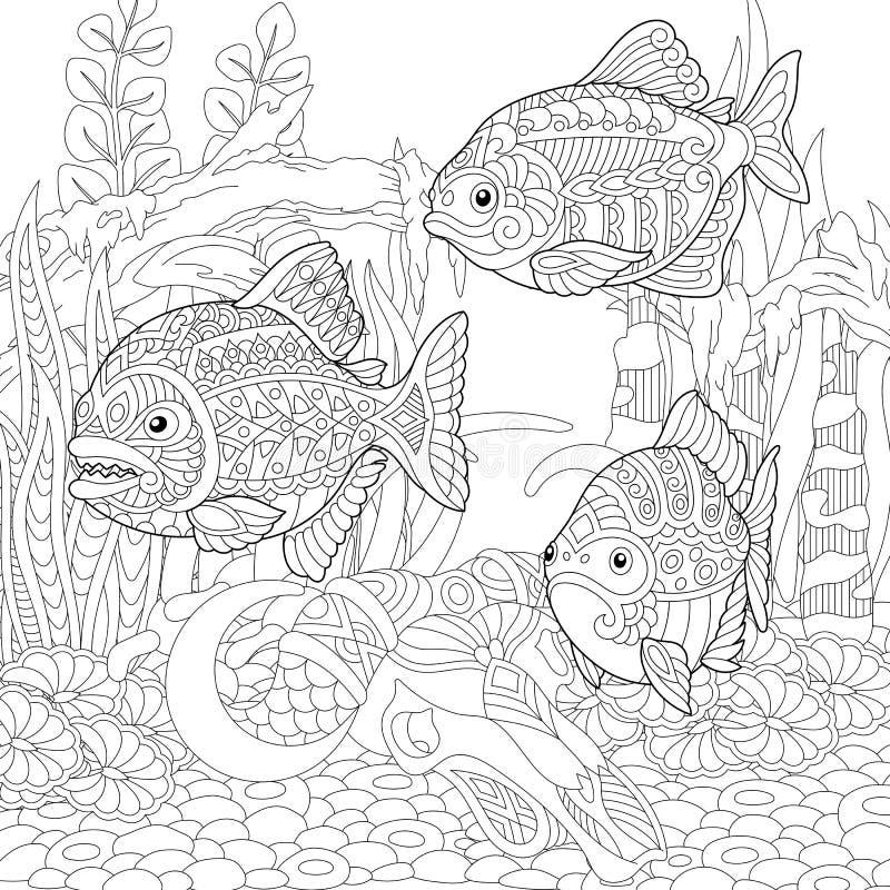 Zentangle piranhas fishes stock illustration