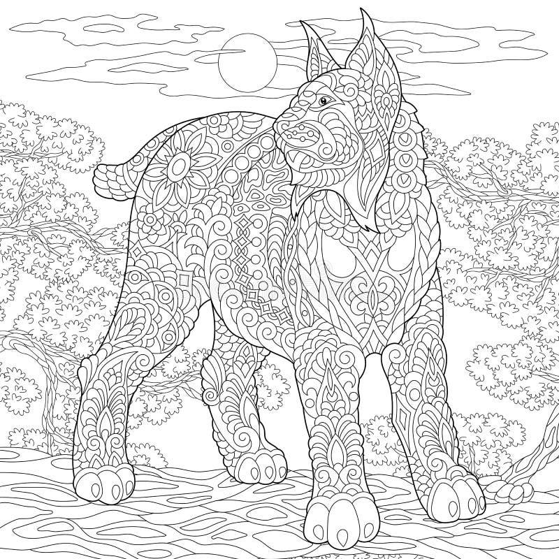 Zentangle rysia rysia rudy dziki karakal ilustracji