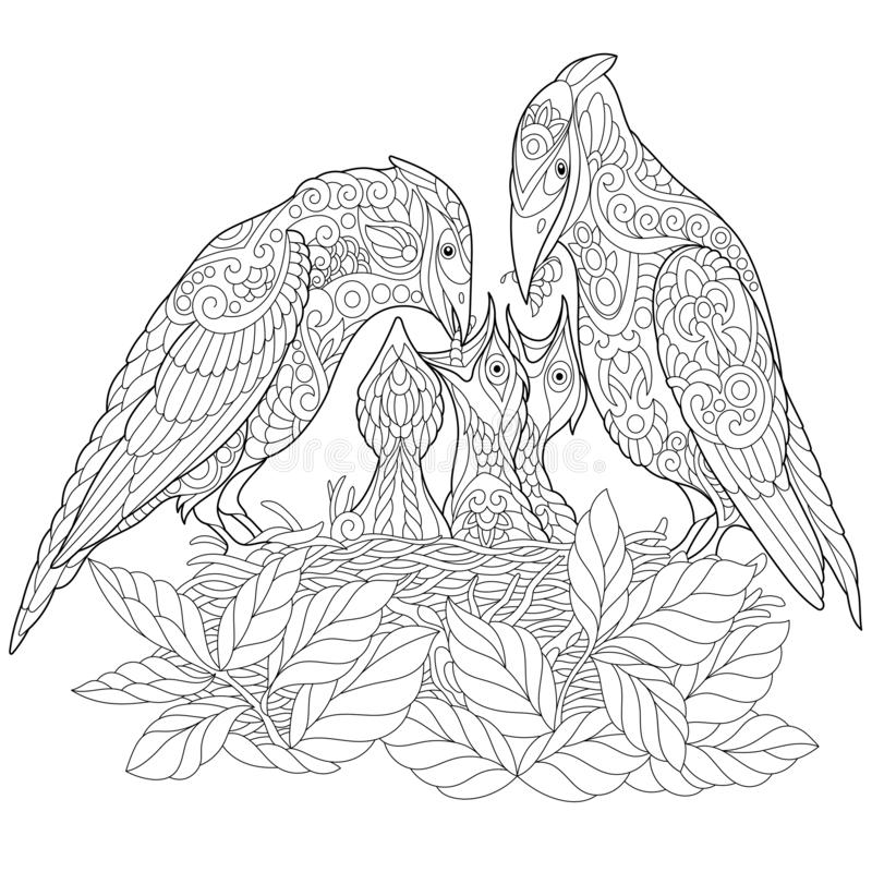 Zentangle spring birds coloring page royalty free stock images